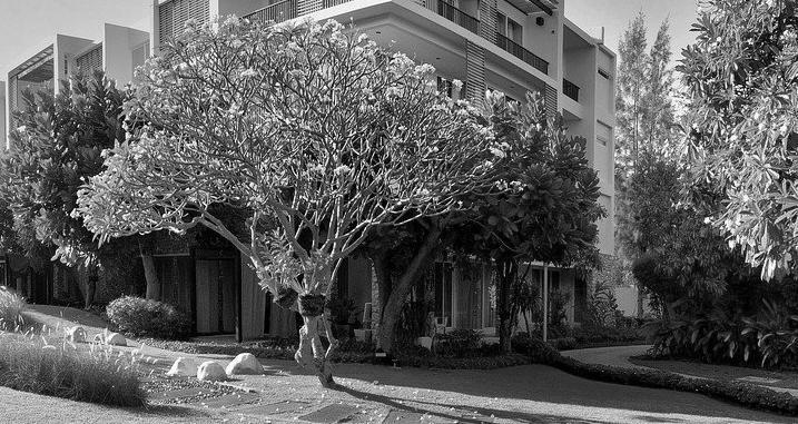 Pool house moderne Doubs 25